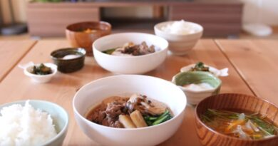 Meat and Tofu(Nikudoufu)